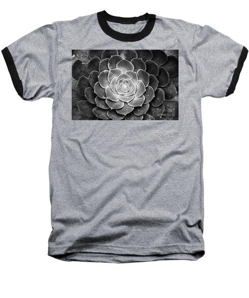 Cactus 18 Deep Bw Baseball T-Shirt