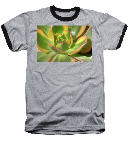 Cactus 4 Baseball T-Shirt by Jim and Emily Bush