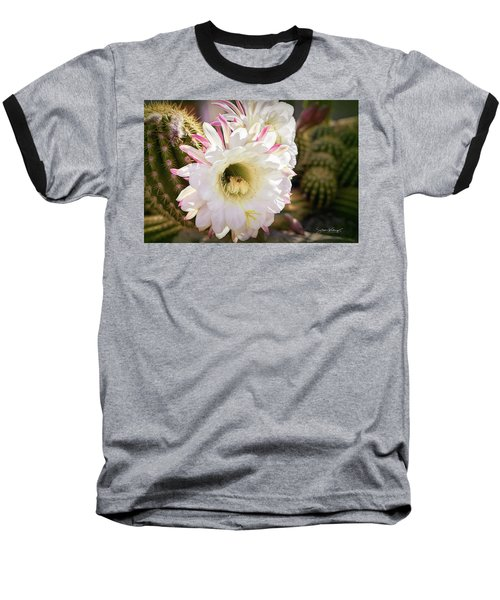 Cactus Bloom 2 Baseball T-Shirt