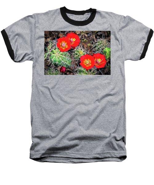 Cactus Bloom Baseball T-Shirt