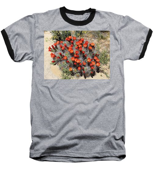 Cactus Bloom In Jtnp Baseball T-Shirt