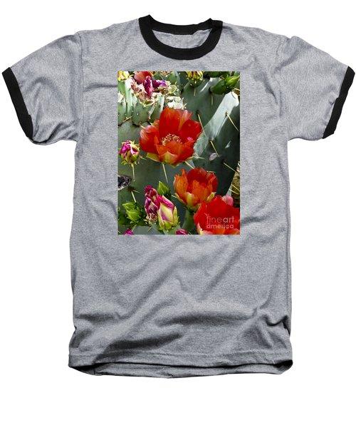 Cactus Blossom Baseball T-Shirt by Kathy McClure