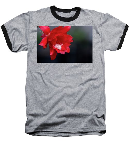 Cactus Blossom Baseball T-Shirt