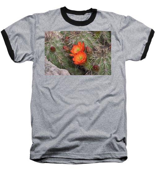 Cactus Blossoms Baseball T-Shirt by Monte Stevens
