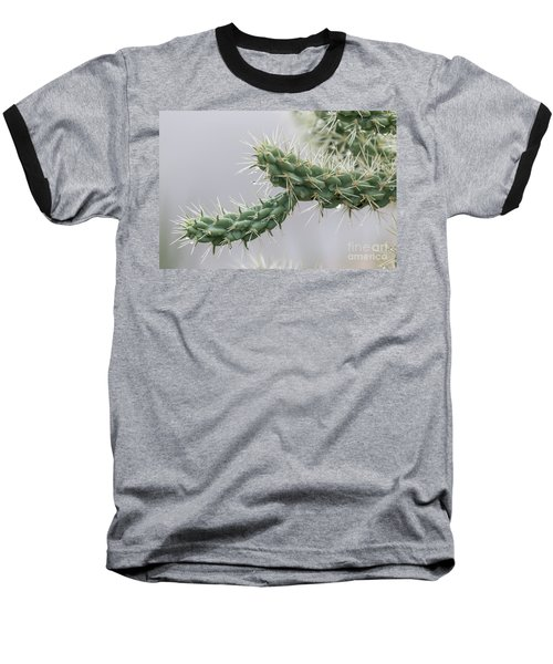 Cactus Branch With Wet White Long Needles Baseball T-Shirt