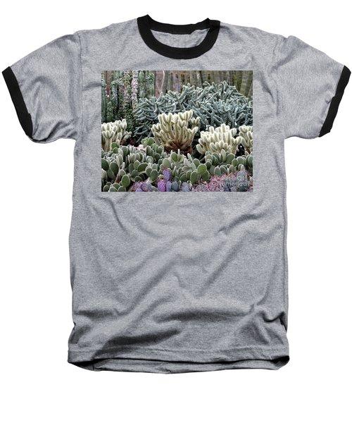 Cactus Field Baseball T-Shirt by Rebecca Margraf