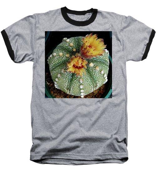 Cactus Flower 10 Baseball T-Shirt