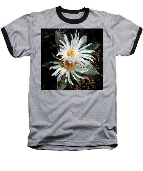 Cactus Flower 7 2 Baseball T-Shirt