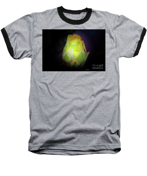 Cactus Flower 7 Baseball T-Shirt
