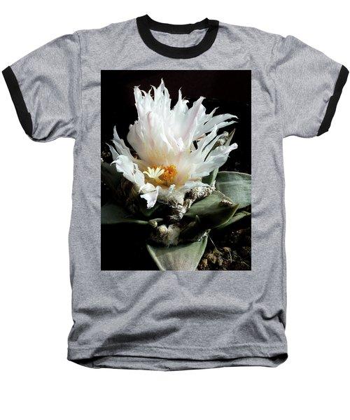 Cactus Flower 8 Baseball T-Shirt