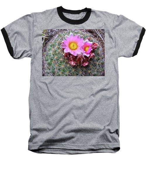 Cactus Flower  Baseball T-Shirt by Alan Johnson
