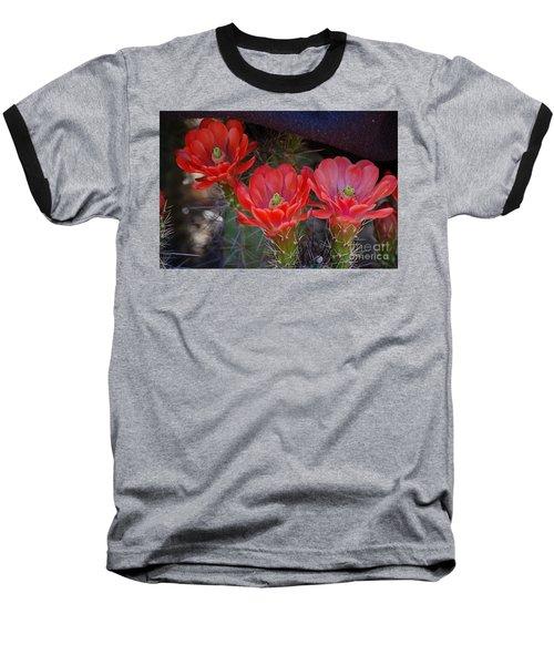 Cactus Flowers Baseball T-Shirt