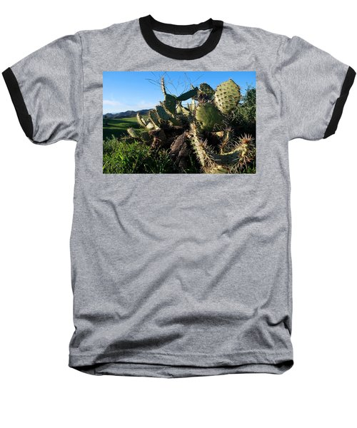 Baseball T-Shirt featuring the photograph Cactus In The Mountains by Matt Harang