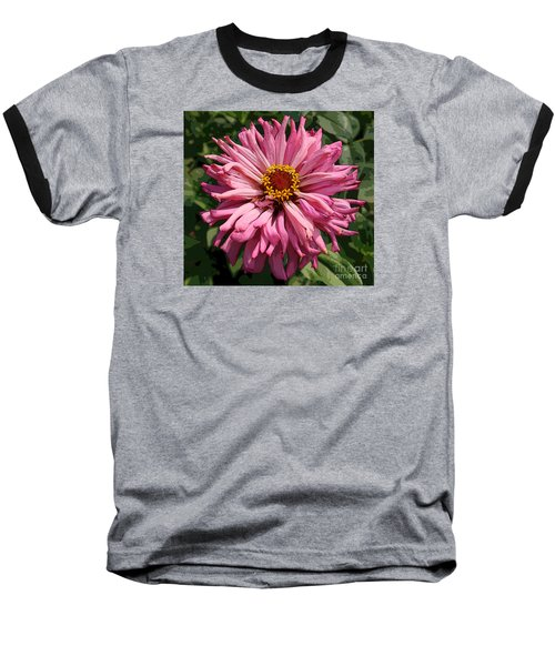 Baseball T-Shirt featuring the photograph Cactus Petal Zinnia by Jeanette French