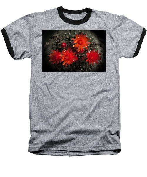 Cactus Red Flowers Baseball T-Shirt by Catherine Lau