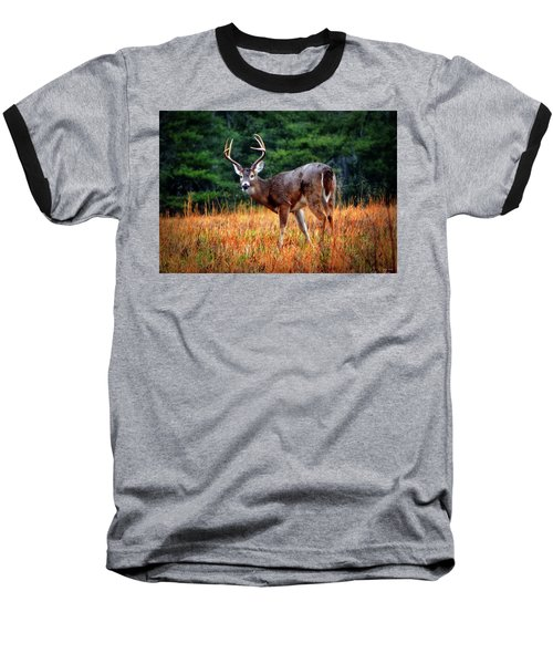 Cades Cove - The Buck Stopped Here 002 Baseball T-Shirt by George Bostian