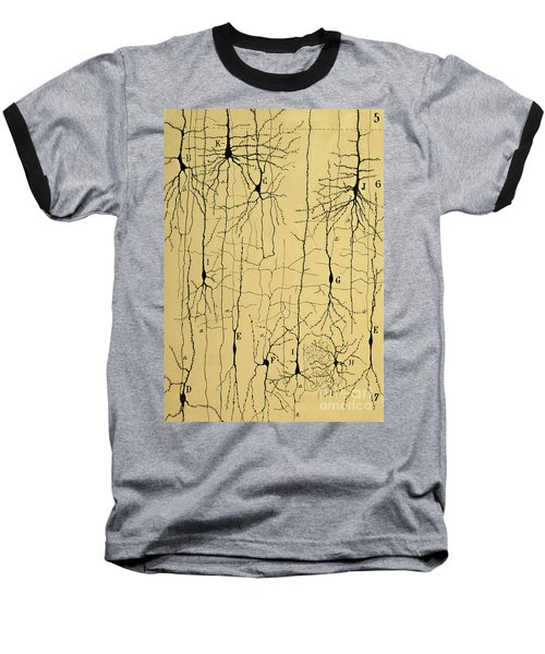 Cajal Drawing Of Microscopic Structure Of The Brain 1904 Baseball T-Shirt