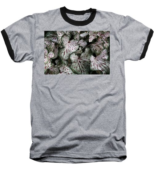Caladium Leaves Baseball T-Shirt