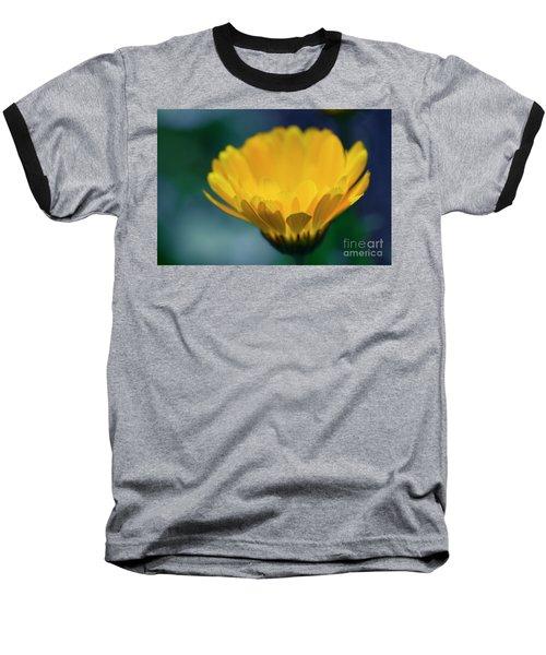 Baseball T-Shirt featuring the photograph Calendula by Sharon Mau