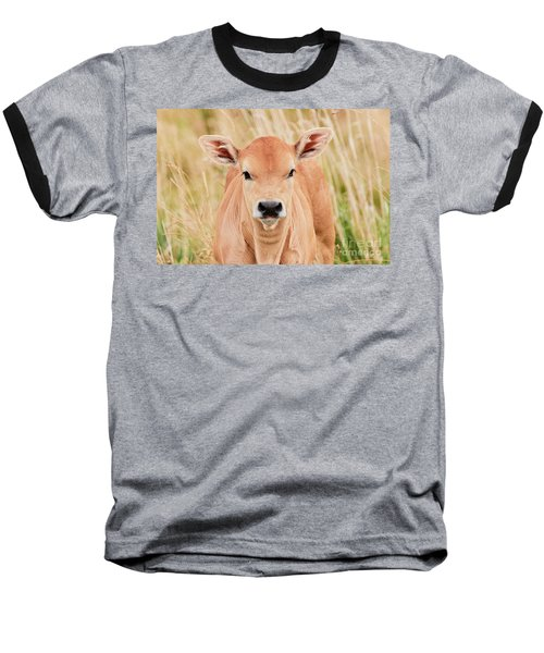 Calf In The High Grass Baseball T-Shirt