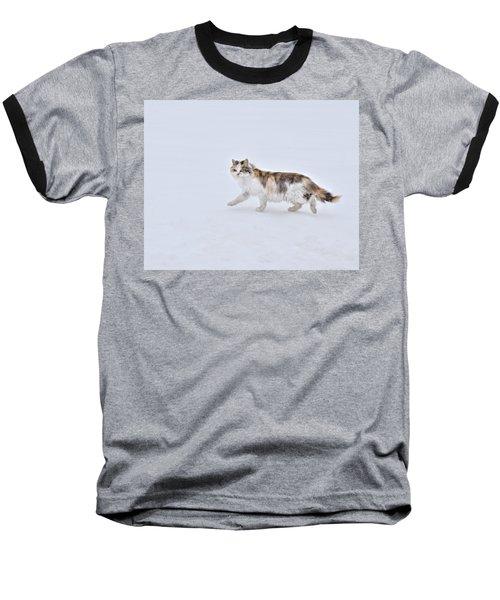 Calico Huntress Baseball T-Shirt