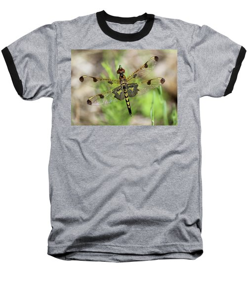 Calico Pennant  Baseball T-Shirt