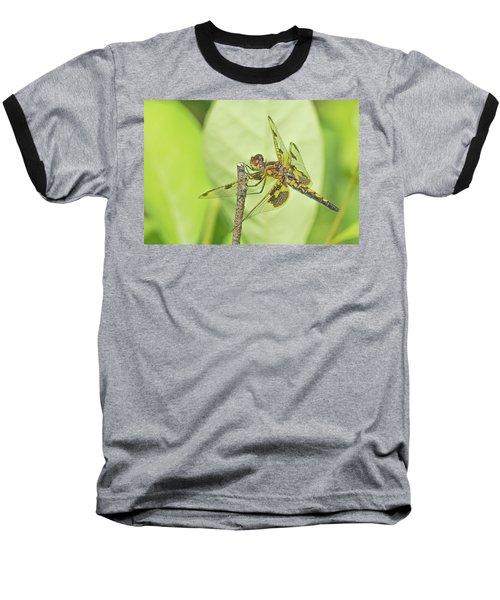 Calico Pennant Baseball T-Shirt