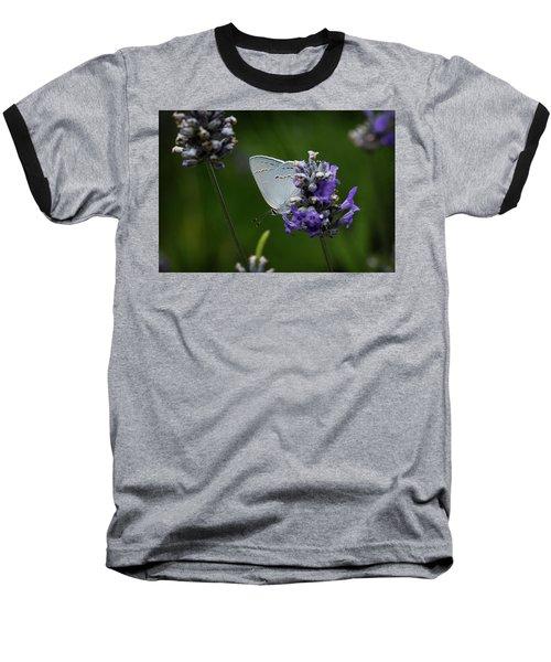 California Hairstreak Butterfly Baseball T-Shirt