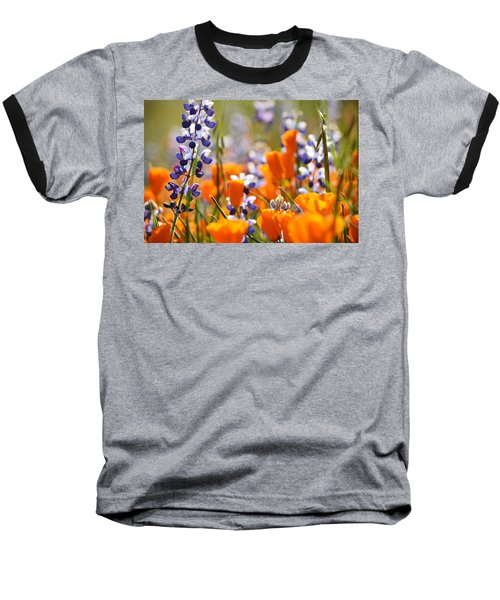 California Poppies And Lupine Baseball T-Shirt by Kyle Hanson