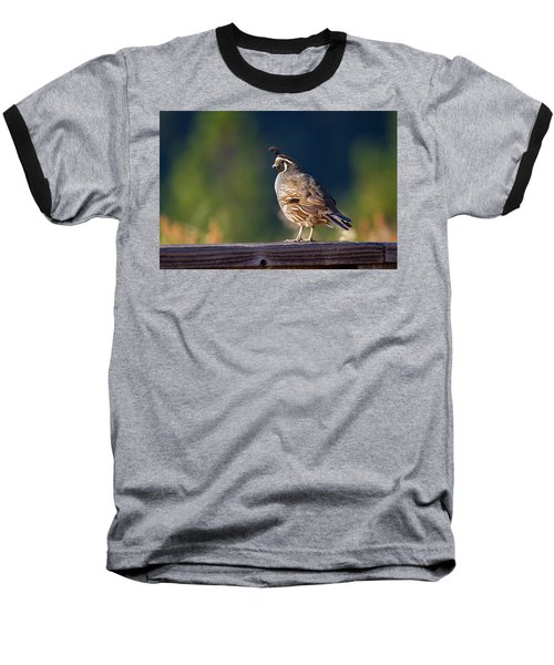 California Quail Baseball T-Shirt