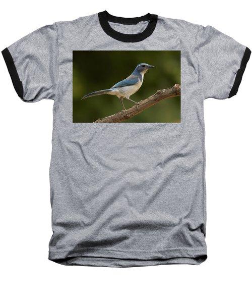 Baseball T-Shirt featuring the photograph California Scrub Jay by Doug Herr