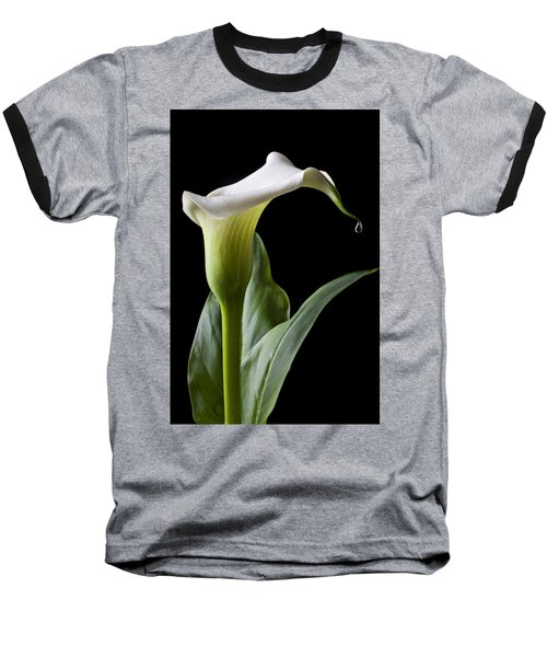 Calla Lily With Drip Baseball T-Shirt by Garry Gay