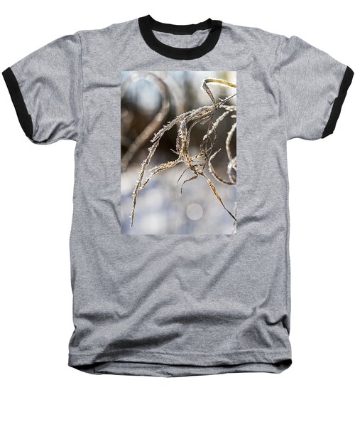 Baseball T-Shirt featuring the photograph Calligraphy In The Grass by Annette Berglund