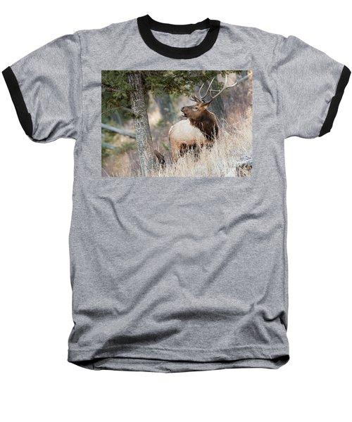 Calling Her Name Baseball T-Shirt