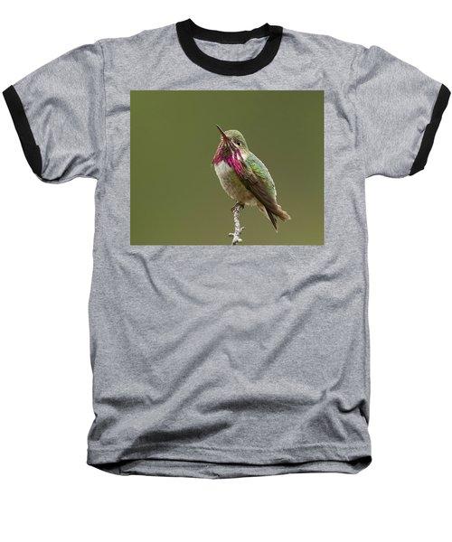 Baseball T-Shirt featuring the photograph Calliope Hummingbird by Doug Herr