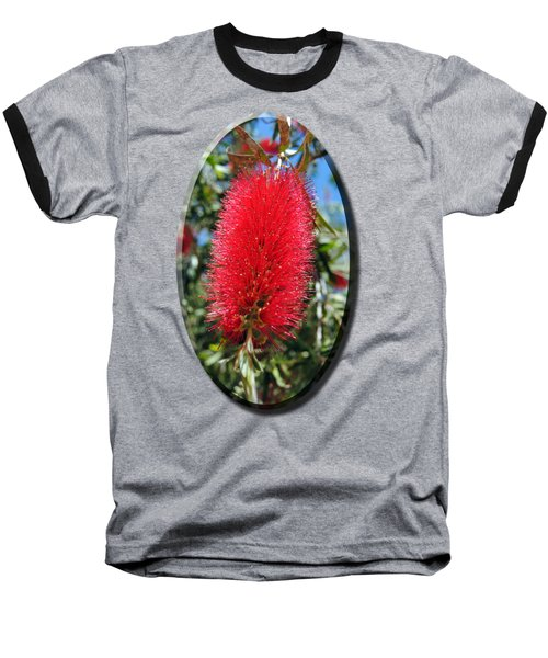 Callistemon - Bottle Brush T-shirt 2 Baseball T-Shirt