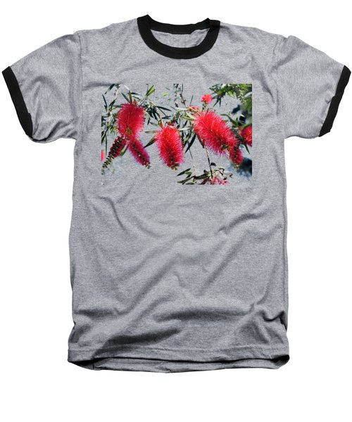 Callistemon - Bottle Brush T-shirt 3 Baseball T-Shirt