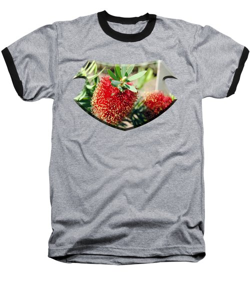 Callistemon - Bottle Brush T-shirt 4 Baseball T-Shirt