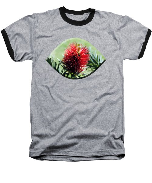 Callistemon - Bottle Brush T-shirt 7 Baseball T-Shirt
