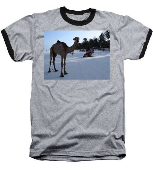 Camel On Beach Kenya Wedding 6 Baseball T-Shirt