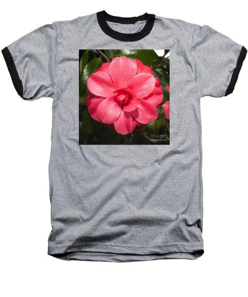 Camellia Japonica ' Mathotiana Rosea' Baseball T-Shirt