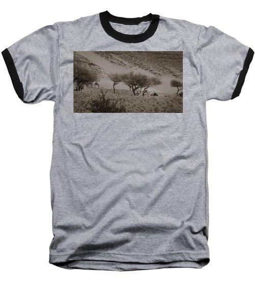 Camels Baseball T-Shirt by Silvia Bruno