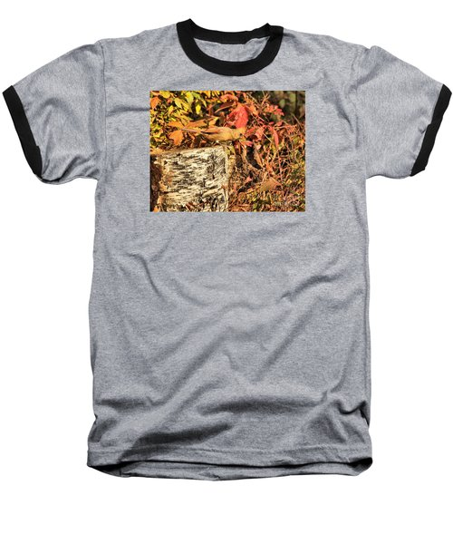 Camo Bird Baseball T-Shirt by Debbie Stahre