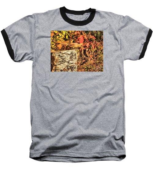 Camo Bird Baseball T-Shirt