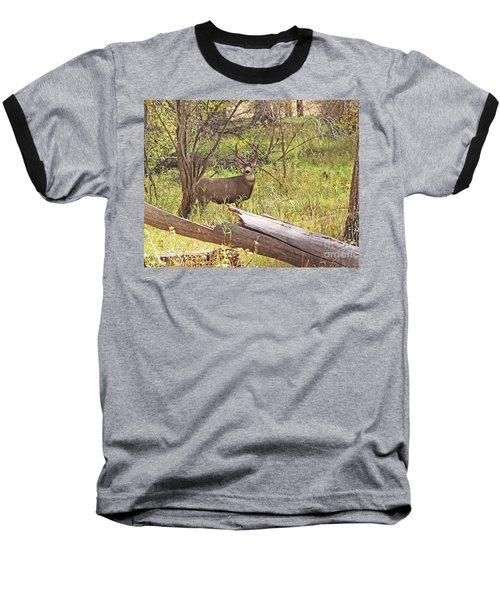 Camouflaged Buck Crystal Creek Colorado IIi Baseball T-Shirt