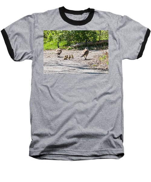 Canada Geese Family Walk Baseball T-Shirt by Edward Peterson