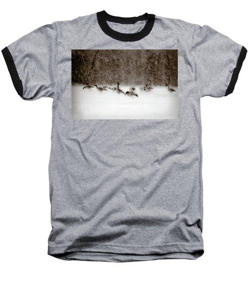 Canada Geese Feeding In Winter Baseball T-Shirt