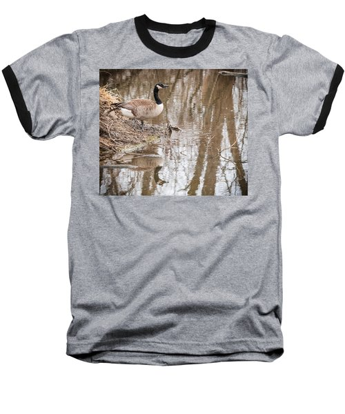 Baseball T-Shirt featuring the photograph Canada Geese Reflection by Edward Peterson