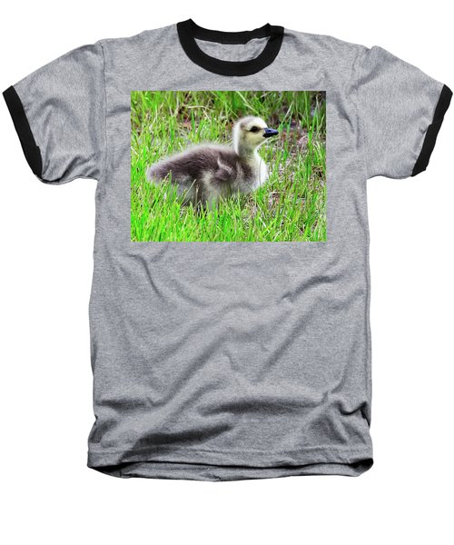 Canada Goose Gosling Baseball T-Shirt