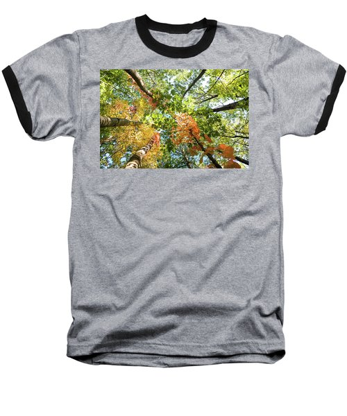 Canadian Foliage Baseball T-Shirt